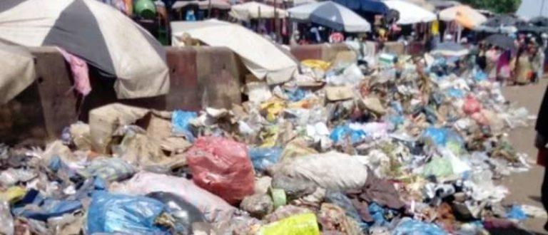 Article : Le sachet plastique: cet autre problème environnemental que nous négligeons
